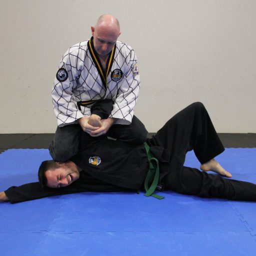 Baysiide Hapkido Adults Program